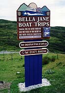 Bella Jane sign